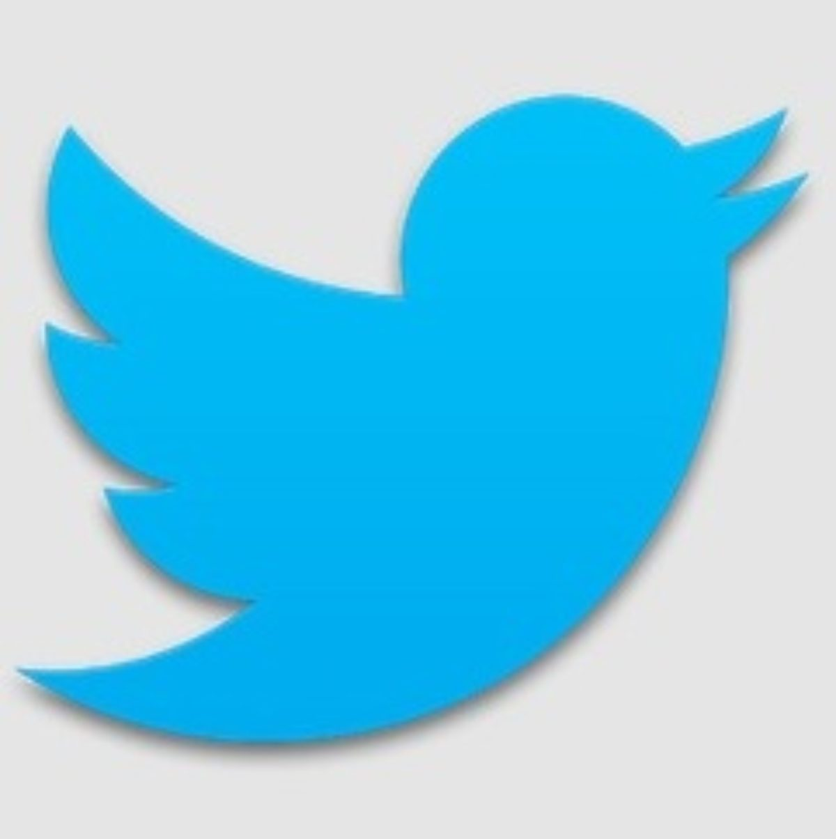 Twitter App for Android   Download the Latest Version 220.20.20 ...