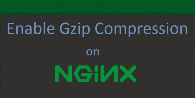 Enable Gzip Compression on Nginx
